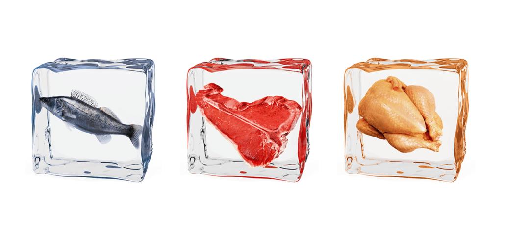 Drei Eiswürfel: Der erste umschliesst einen Fisch, der zweite ein Stück Fleisch und der dritte ein Poulet.